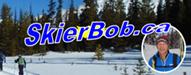Top 20 Ski Blogs 2019 skierbob